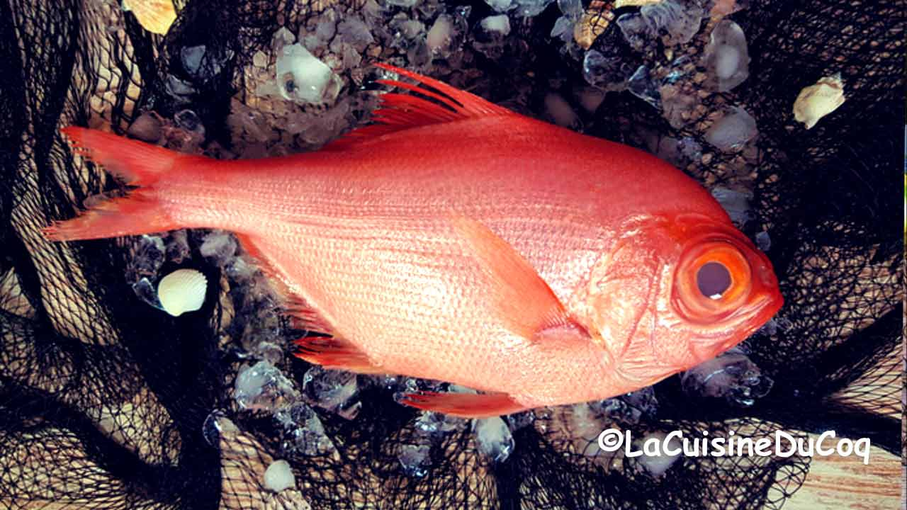 conseil poisson au four matière première