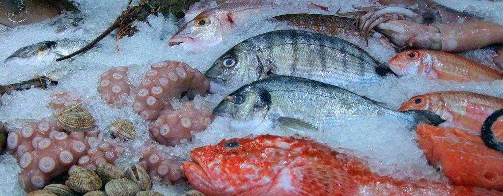 poissons mer saison