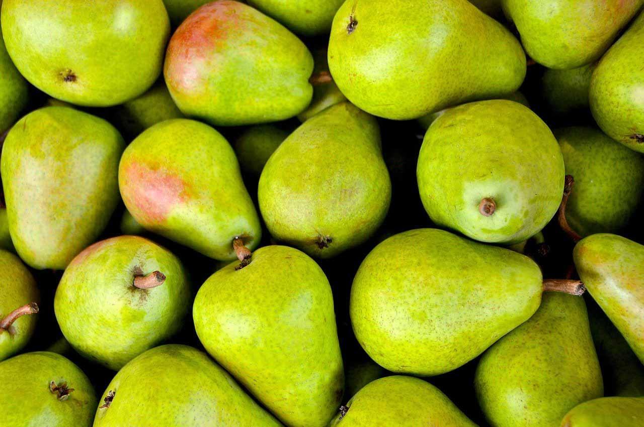 fruit de saison poire