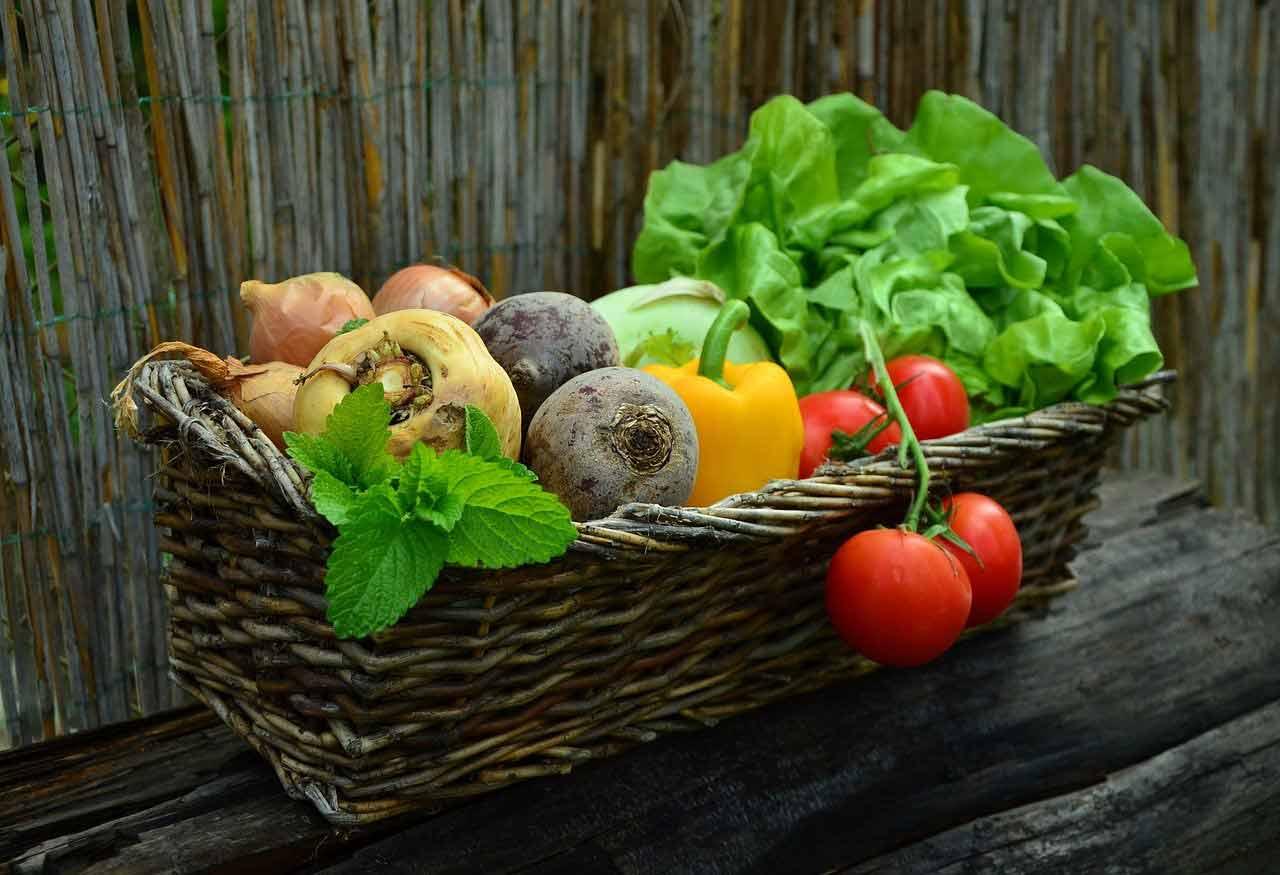 salades-composées-panier potager