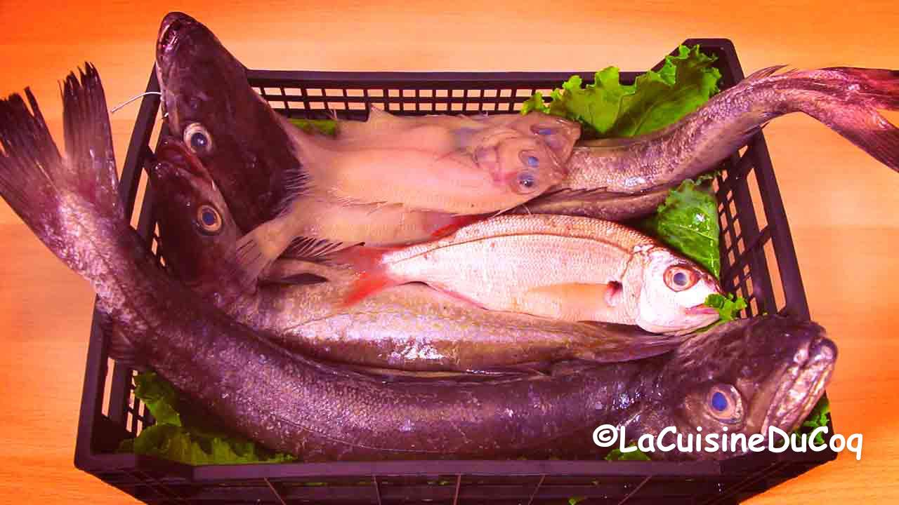 la-cuisine-du-coq-2